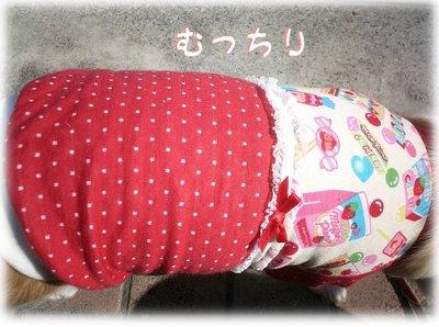 06_11_10_kurin2