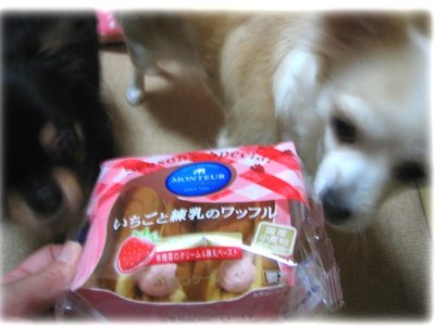 06_11_15_kurimimi2