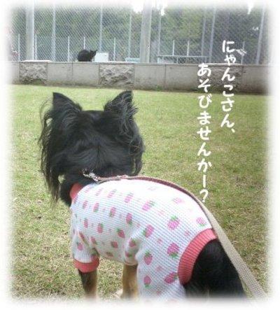 06_11_2_mimi4