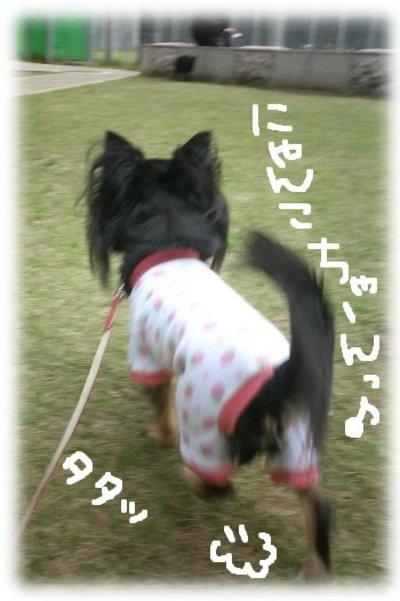 06_11_2_mimi7