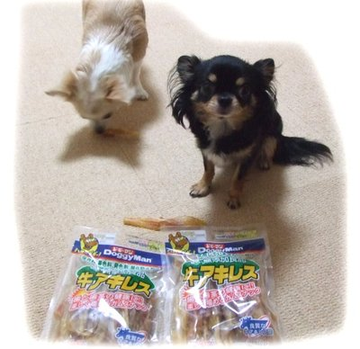 06_12_16_kurimimi4
