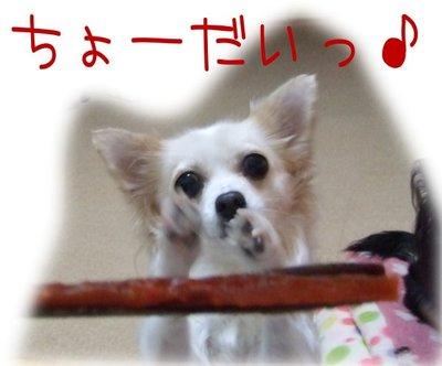 06_12_2_kurin1