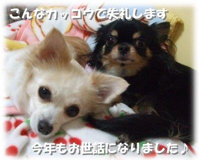 06_12_31_kurimimi1