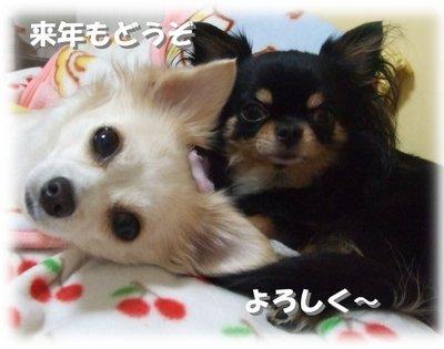 06_12_31_kurimimi2