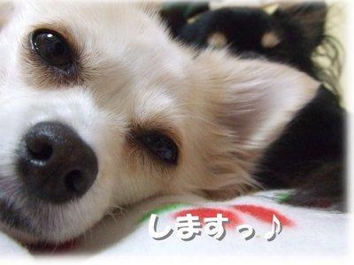 06_12_31_kurin1