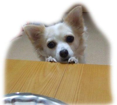 06_12_7_kurin2
