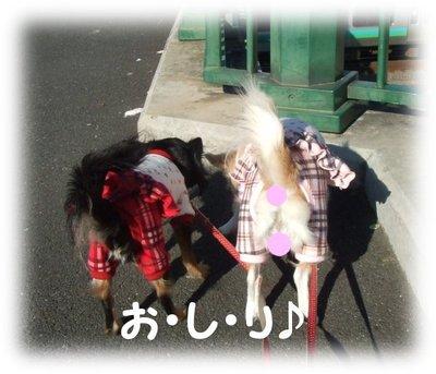 07_1_10_kurimimi2