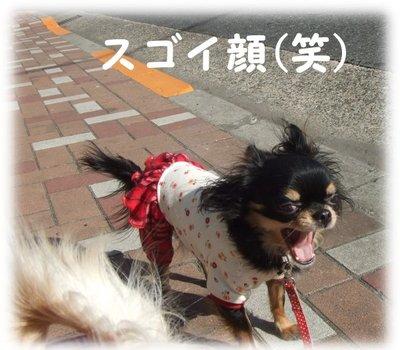07_1_15_mimi1_1
