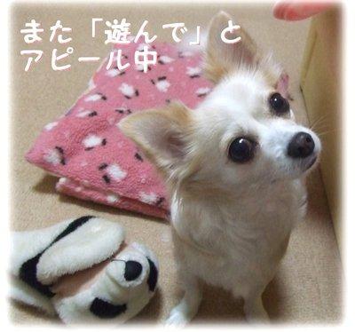 07_1_16_kurin1