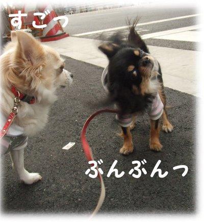 07_1_19_kurimimi1