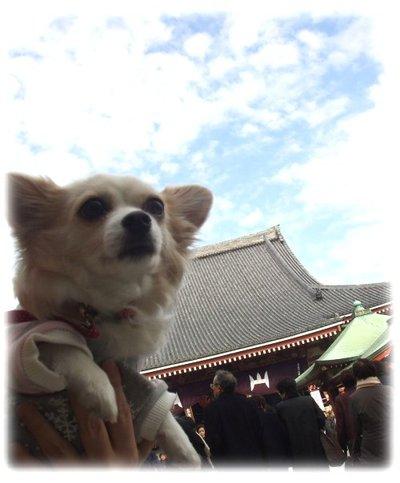 07_1_19_kurin3