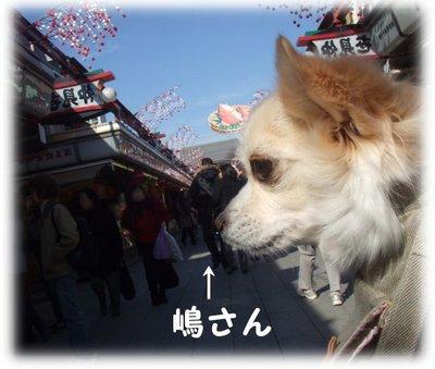 07_1_23_kurin1