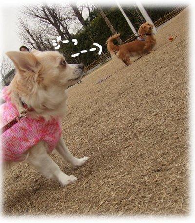 07_1_2_kurin2