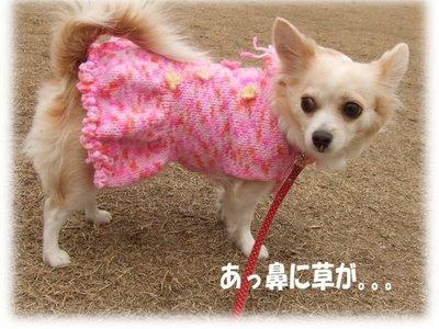 07_1_2_kurin3