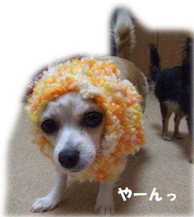 07_1_2_kurin5