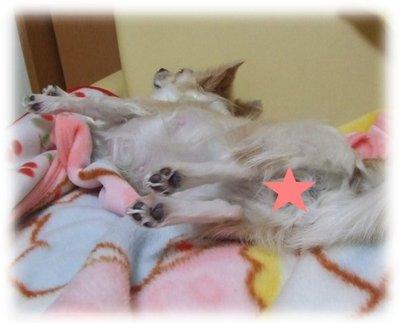 07_1_3_kurin1