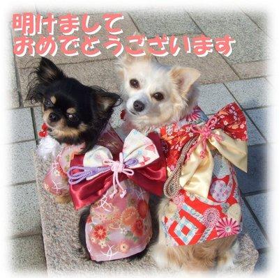 07_1_4_kurimimi8