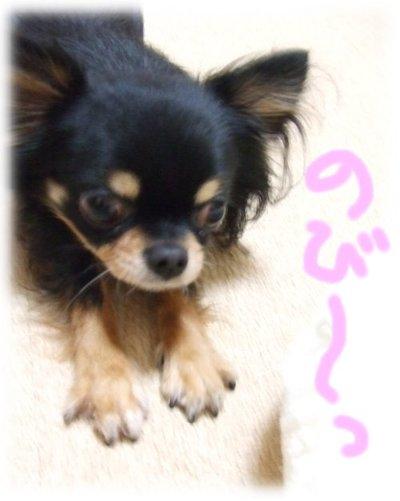 07_2_18_mimi1