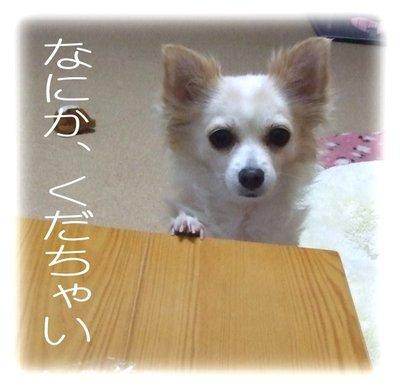 07_2_21_kurin1