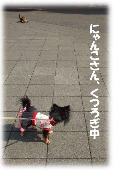 07_2_22_mimi2