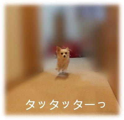 07_2_23_kurin1