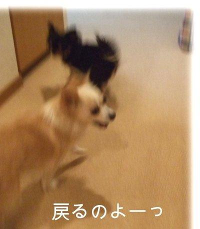 07_2_23_kurin3