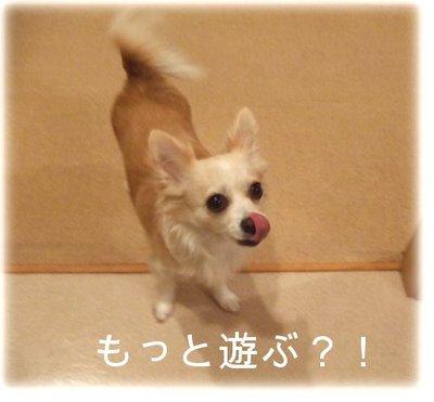 07_2_23_kurin7