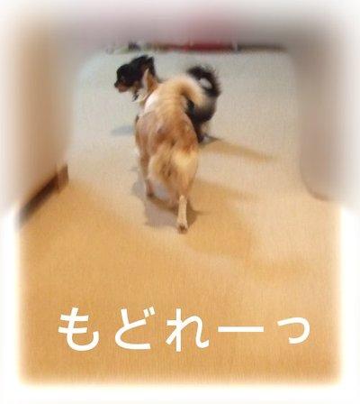 07_2_23_kurin8