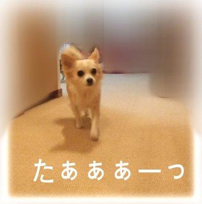 07_2_23_kurin9