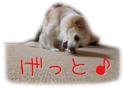 07_4_7_kurimimi6