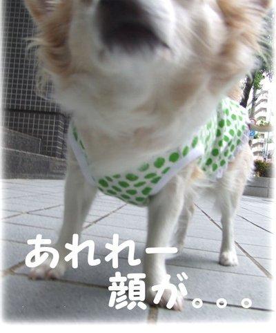 07_5_10_kurin3