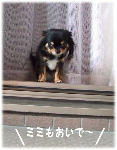 07_5_22_mimi1