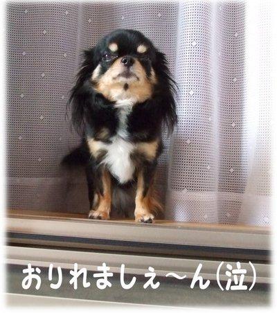 07_5_22_mimi2