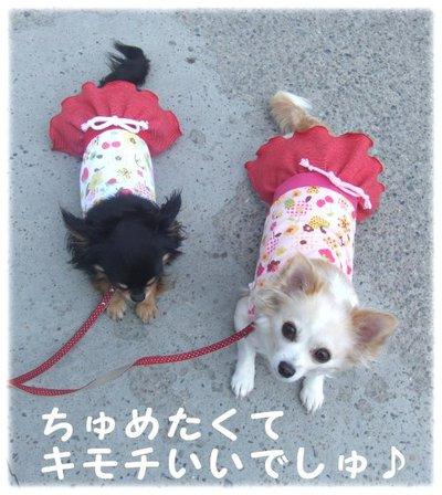07_5_23_kurimimi5