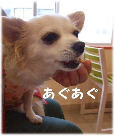 07_5_23_kurin5