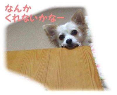 07_5_7_kurin1