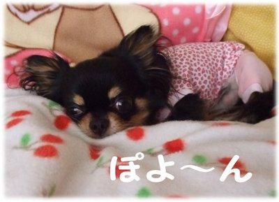 07_6_30_mimi1