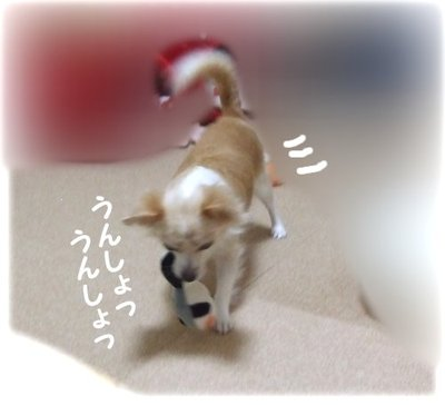 07_8_21_2